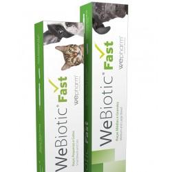 WeBiotic fast cães de raça pequena e gatos pasta 12 ml